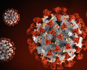 Основне информације за грађане у вези са корона вирусом